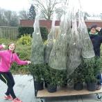 Kerstmarkt Binkhorst 2014 (2)